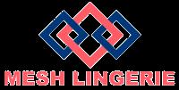 Mesh Lingerie